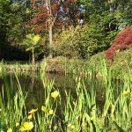 giardino biologico Guggia