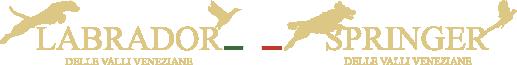 Labrador delle Valli Veneziane