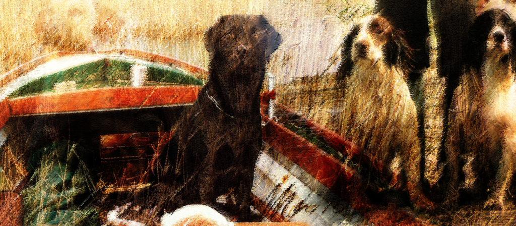home-labrador-springer-tela-quadro